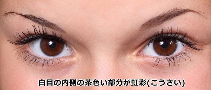 目の虹彩部分