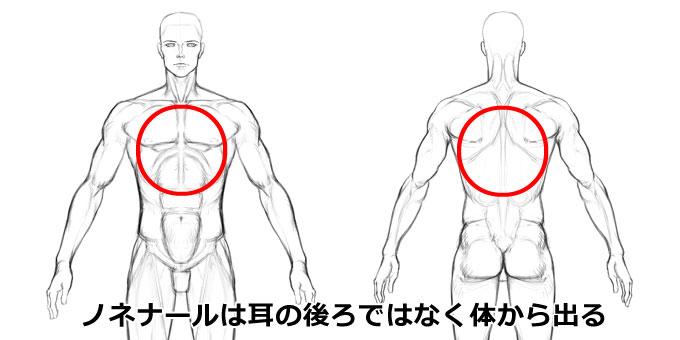 ノネナールは耳の後ろではなく、体から分泌される