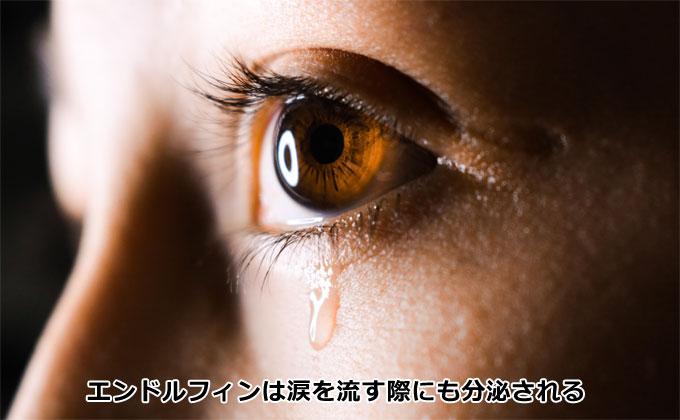 エンドルフィンは涙を流す際にも分泌される