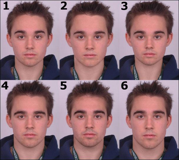 6種類のタイプの男性の顔写真